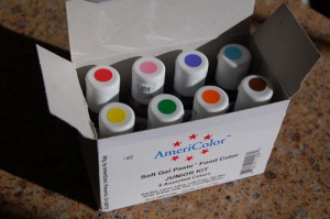 AmeriColor Junior Kit
