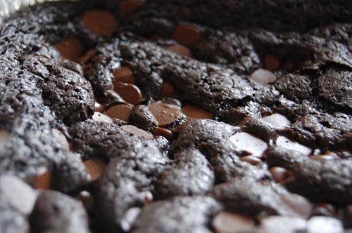 Ultimate Chocolate Brownies - Complete