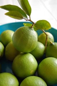keylimetruffle.limes
