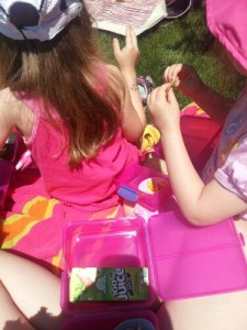 Picnic lunch with Sistema Lunch Cubes