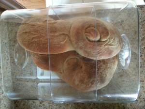 Plastic Bread Keeper - Progressive International